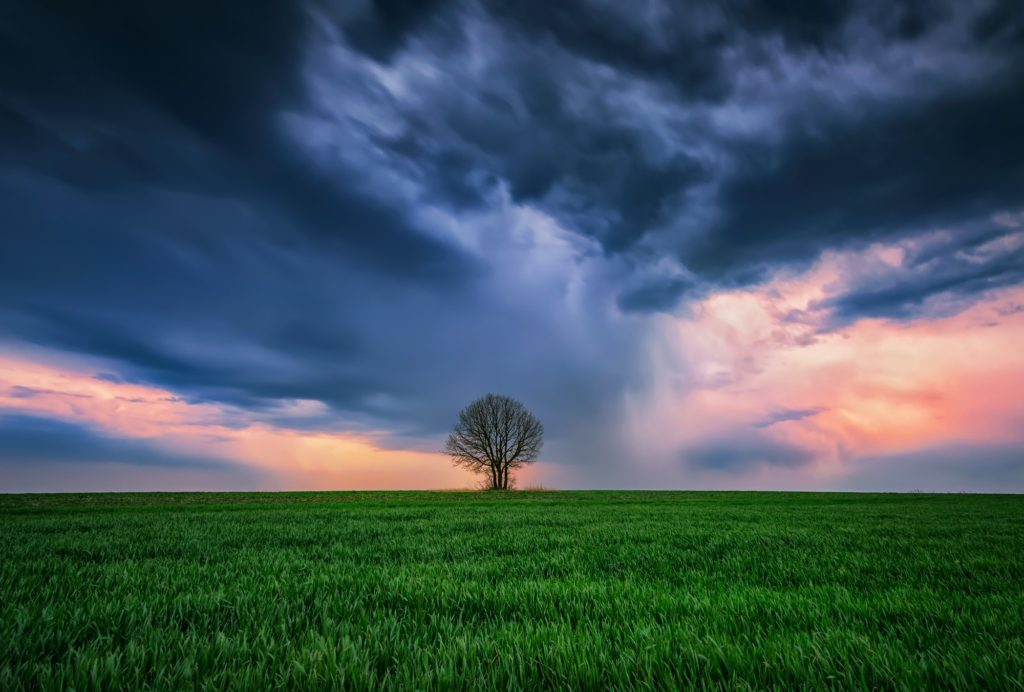 Alone in the storm